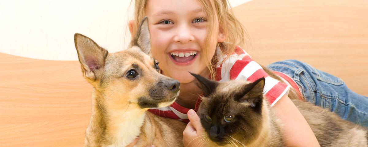 seguro animais de estimação